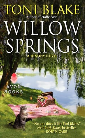 Willow Springs book image