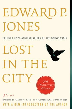 Lost in the City - 20th anniversary edition book image