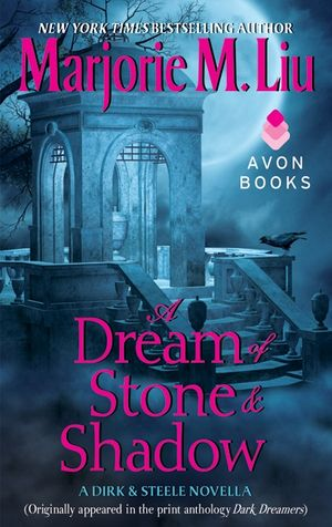 A Dream of Stone & Shadow book image