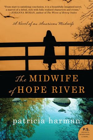 The Midwife of Hope River book image