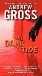 The Dark Tide Paperback  by Andrew Gross