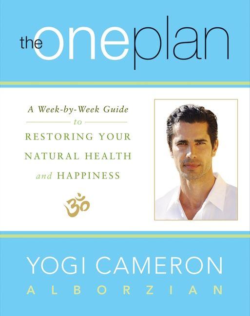 The one plan yogi cameron alborzian e book read a sample enlarge book cover fandeluxe Choice Image