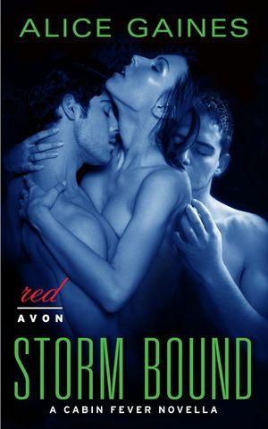 Storm Bound book image