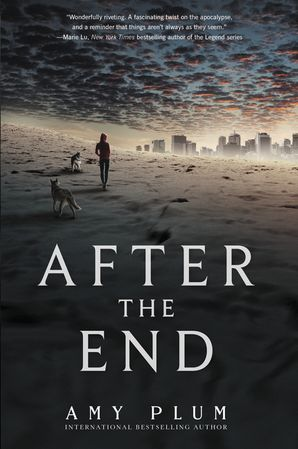 After the End Paperback  by Amy Plum