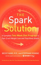 The Spark Solution Paperback  by Becky Hand