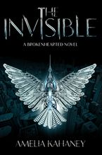 The Invisible Hardcover  by Amelia Kahaney