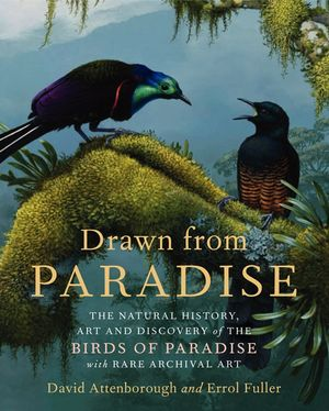 Drawn from Paradise book image