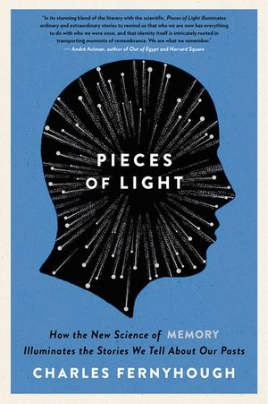 Pieces of Light book image