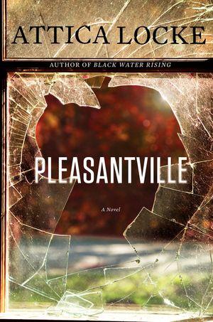 Pleasantville book image