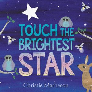 Touch the Brightest Star book image
