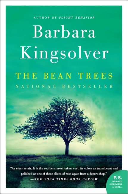 the bean trees book review
