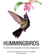 Hummingbirds Hardcover  by Michael Fogden
