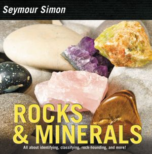 Rocks & Minerals book image