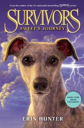 Survivors: Sweet's Journey