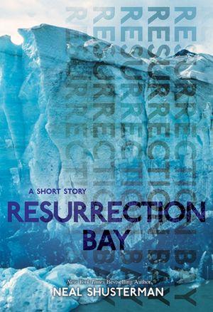 Resurrection Bay book image