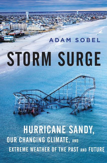 Book cover image: Storm Surge: Hurricane Sandy, Our Changing Climate, and Extreme Weather of the Past and Future