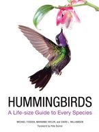 Hummingbirds eBook  by Michael Fogden