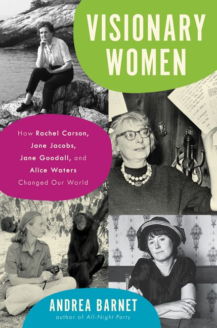 Visionary Women - Andrea Barnet - Hardcover
