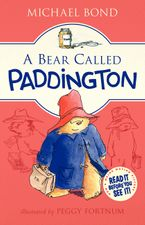 Paddington Bear in the Garden