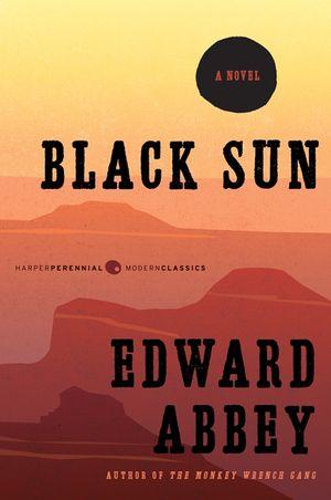 Black Sun book image
