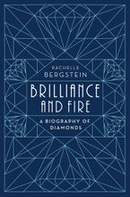 Brilliance and Fire Hardcover  by Rachelle Bergstein