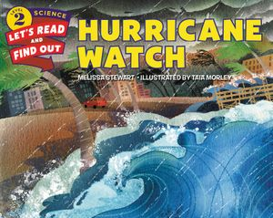 Hurricane Watch book image