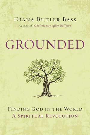 Grounded book image
