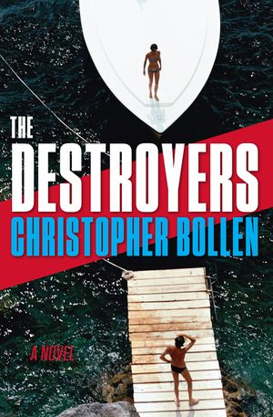 The Destroyers book image