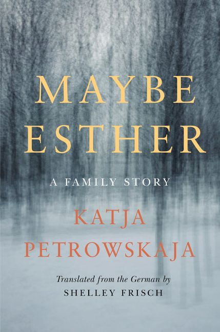 Image result for Maybe Esther by Katya Petrowskaya