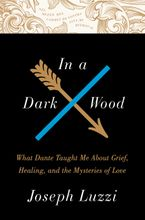 In a Dark Wood Hardcover  by Joseph Luzzi