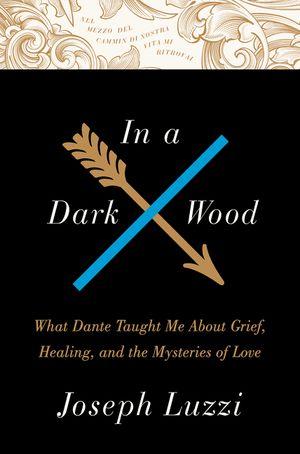 In a Dark Wood book image