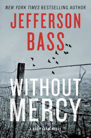 Without Mercy book image