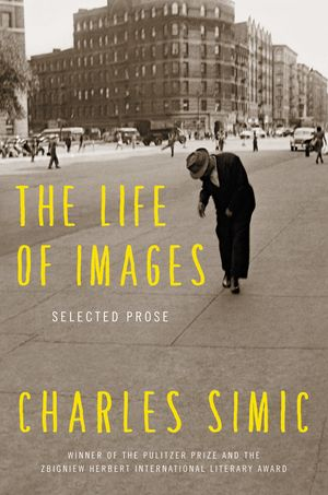 The Life of Images book image