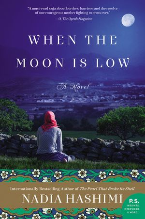 When the Moon Is Low book image