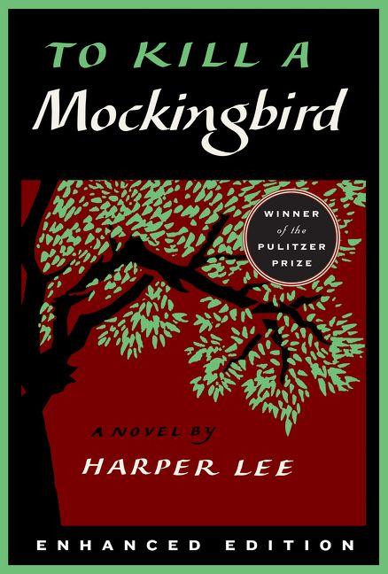 to kill a mockingbird long summary