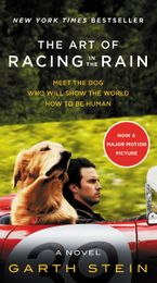 the-art-of-racing-in-the-rain-movie-tie-in-edition