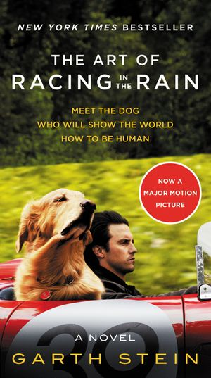 The Art of Racing in the Rain Movie Tie-in Edition book image