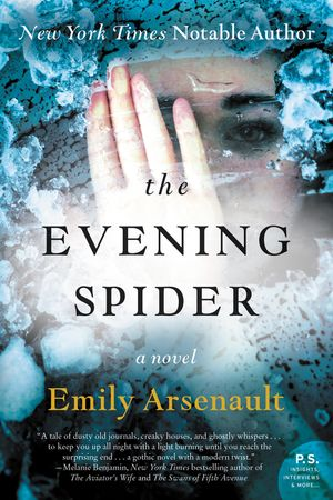 The Evening Spider book image
