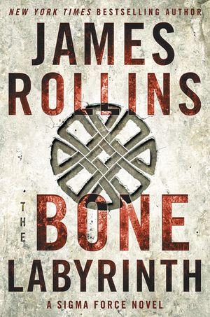 The Bone Labyrinth book image