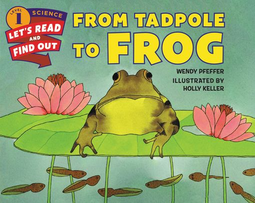 From Tadpole to Frog - Wendy Pfeffer - Paperback