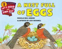 a-nest-full-of-eggs