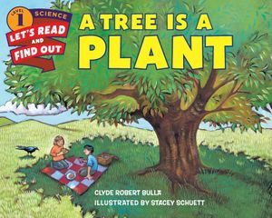 A Tree Is a Plant book image