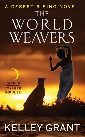 The World Weavers book image