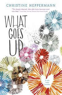 what-goes-up