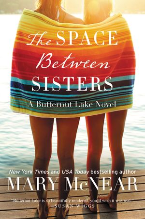 The Space Between Sisters book image
