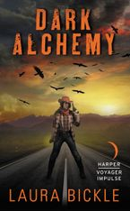 Dark Alchemy Paperback  by Laura Bickle