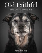 Old Faithful eBook  by Pete Thorne
