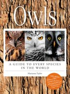 Owls Hardcover  by Marianne Taylor