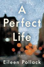 A Perfect Life Hardcover  by Eileen Pollack