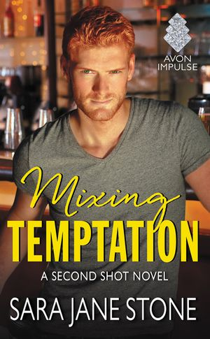 Mixing Temptation book image